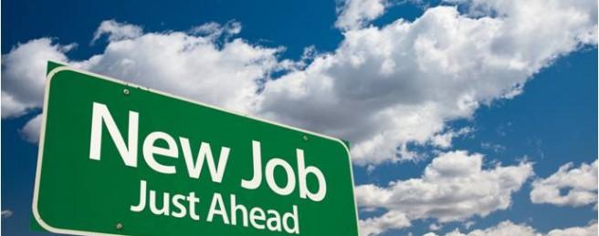new-job-Prolux