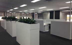 Paragon_Care_Office_Fitout_Electrical